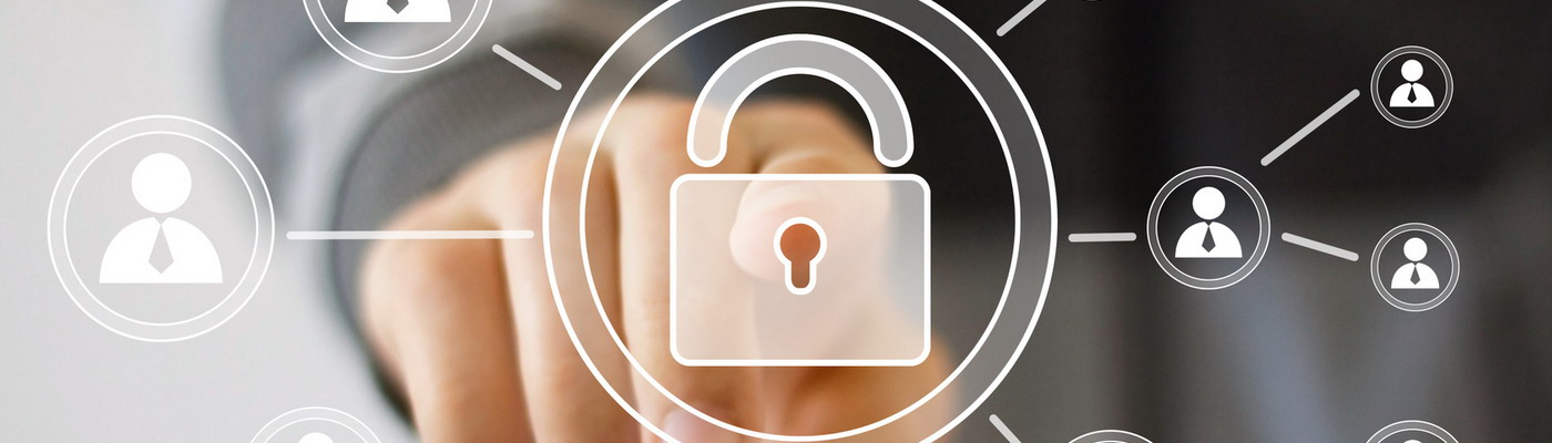 Cyber Security in the Digital Age