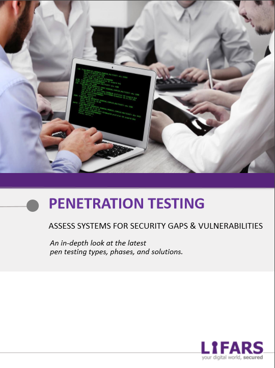 Penetration Testing Whitepaper by LIFARS