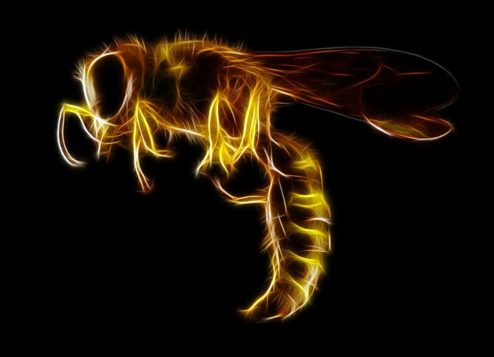 New HiddenWasp Malware Targets Linux Systems